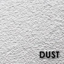 fotooboi_01_dust